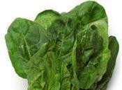 alimentos contienen ácido fólico.