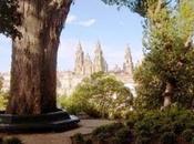 parque Alameda árbol Amor