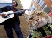 Bob, gato callejero cambió vida músico calle