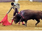 Jiménez Fortes ofrecido para torear solitario Pamplona