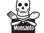29/01: Marcha contra Monsanto Malvinas Argentinas