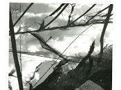 `fuga relatos´ berbel, astrid ramos olivia falcón