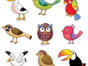 Coloridas caricaturas aves