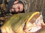 Pesca siluros lanzado 2013