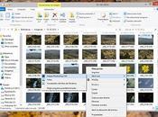 Unidad Trabajando Photoshop CS6. Conceptos básicos