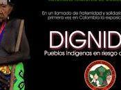 """Muestra Fotográfica """"DIGNIDAD: pueblos indígenas Colombia riesgo exterminio"""""""