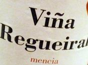 Viña Regueiral 2008 High Violet