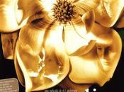 Clásicos Palomita: 'Magnolia'