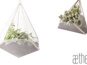 Aether: terrarios prisma vidrio encañuelado alpaca