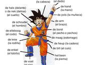 Aprendiendo Vocabulario. Lección Partes cuerpo