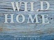 """estado alli: inauguracion exposición """"home wild home"""" gabi calvo. canalla, gallery"""