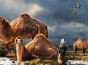 Ártico vivian camellos gigantes ¿Curioso?