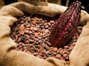 Grandes beneficios chocolate para nuestra salud
