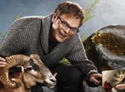 Rainn Wilson cambia oficina versión sueca Torrente