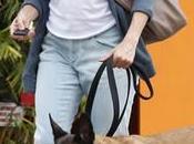 Mendes collar eléctrico canino ella misma (VIDEO)