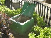 RECREO -Plaza Delicias Utilizan agua pública para lavar carros