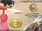 Agility Championships Europe World Event