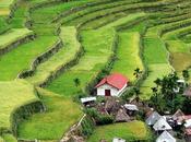Montañas arroz pueblos ancestrales