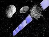 reino asteroides Clasificación