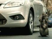 Cómo aparcar coche siguiendo indicaciones...