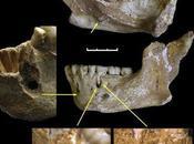 neandertales Sidrón eran diestros