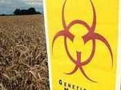 terror transgénicos llega Venezuela mano Monsanto