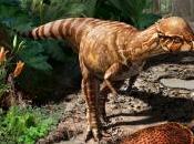 nuevo tipo dinosaurio cuestiona teoría sobre tamaño estos animales