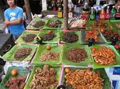 Recetas para comer insectos