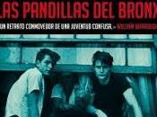 Wanderers. pandillas Bronx, Richard Price