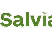 """""""Salvia"""" proyecto integrador sostenibilidad sociedad justa"""