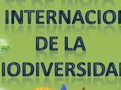 internacional Biodiversidad 2013