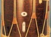 Instrumentos Musicales Tambor Caracteristicas