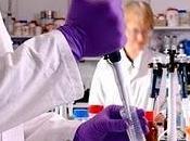 Expertos oncología actualizan tratamiento linfoma células manto