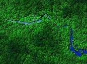 Descubren ciudades perdidas bajo Selva Honduras
