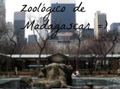 zoológico Central Park