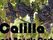 Calilla: Capítulo Hasta siempre señorita