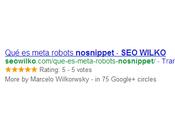 meta robots nosnippet