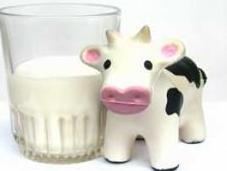 Diferencias entre intolerancia alergia lactosa leche