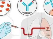 Aprueban vacuna argentina para tratar cancer pulmon.