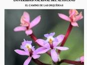 Curso Internacional Ecología Conservación Universidad tecnológica Boliviana Nacional Altiplano (Perú) julio 2013