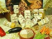 Cultura gastronomica española