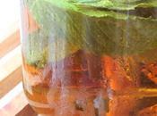 frío menta naranja mint orange iced