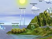 Introducción factores abióticos ciclos biogeoquímicos