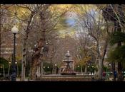 Jardines Plaza Colón