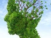 Síntomas prevención derrame cerebral