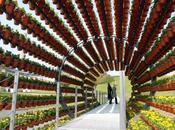 arquitectura ecológica tiene ejemplos