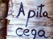 Pita Cega: caprichos Pilar aires Ribeiro.