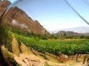 vino mate, reconocidos como auténticas costumbres argentinas
