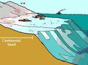 Ecosistemas agua salada, zona nerítica