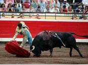Bilbao. toro torero